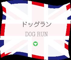 ドッグラン DOG RUN